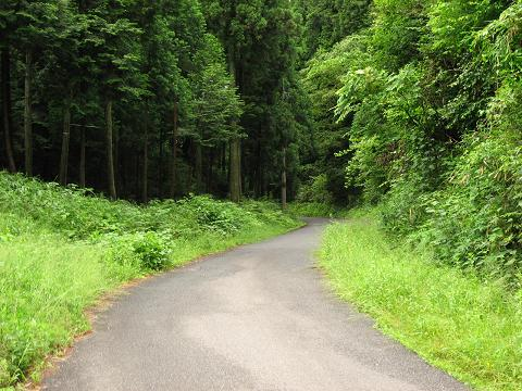 今須峠越えの旧道