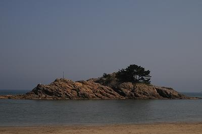 20080502-21.jpg