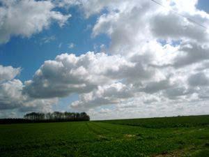 2008032901.jpg