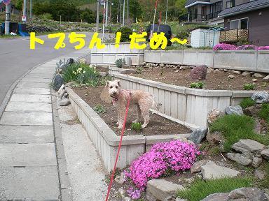 カラオケ 003