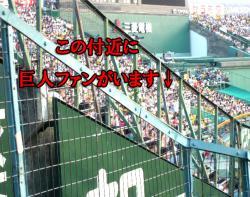 絵日記7・14観戦