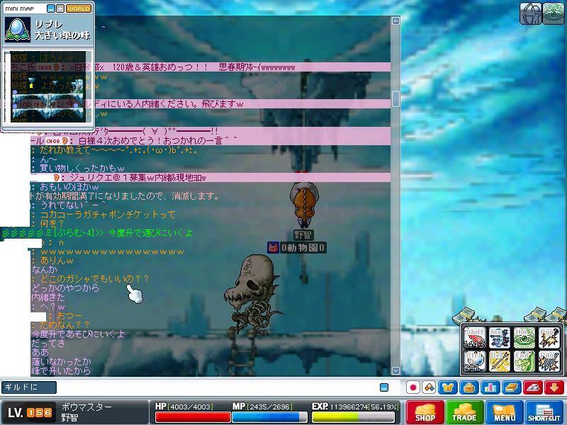 Maple00102.jpg