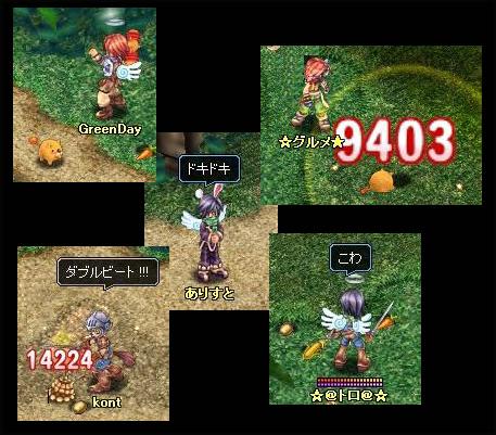 20060129041131.jpg