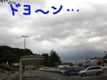 CIMG7559a.jpg