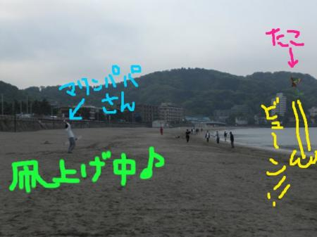 CIMG9501a.jpg