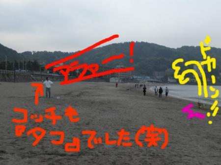 CIMG9502a.jpg