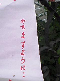 080707_1819~01