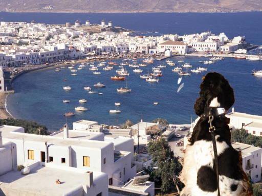かのんinギリシャ0000