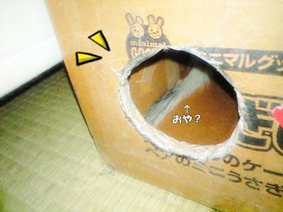 遊び用の穴
