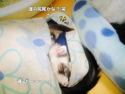 寝袋にて☆