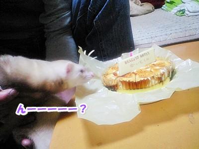 ななとケーキの2ショット☆