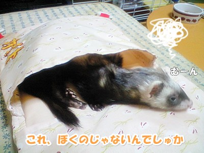 イジケるあゆむさん(汗)