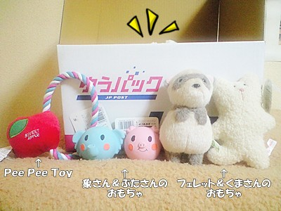 おもちゃが登場☆