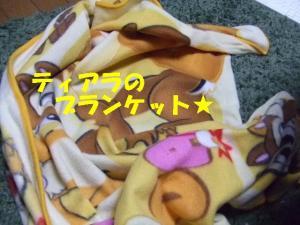 てぃあら200827 003