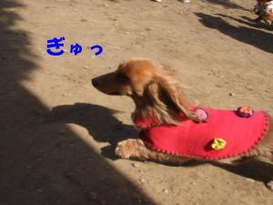 昭和記念公園 033 ぺ