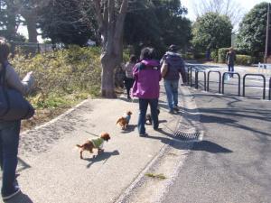 昭和記念公園 057