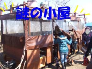 昭和記念公園 063