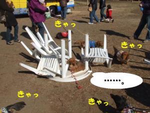 昭和記念公園 103 ぺ