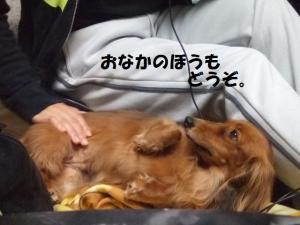 015 ぺ