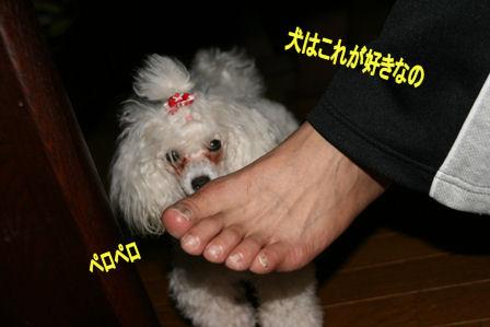 IMG_5067b.jpg