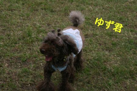 IMG_5259b.jpg