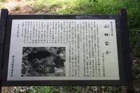 山田富士1