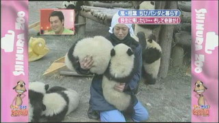 [TV] 20080412 zoo  SP (1h33m47s)[(097529)14-07-57]
