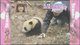 [TV] 20080412 zoo  SP (1h33m47s)[(130402)14-28-53]