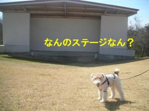 コピー ~ DSCN8176