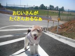 コピー ~ DSCN8202
