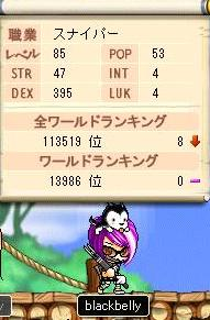 Maple1743@.jpg