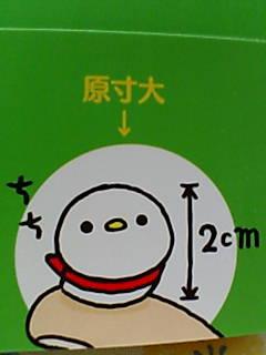 F1000467_20080131213017.jpg