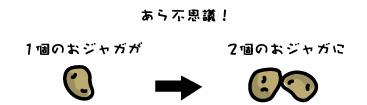 203-6.jpg