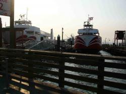 Fishermans Wharf-5