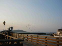 Fishermans Wharf-9