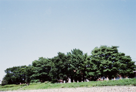 20080528-04.jpg
