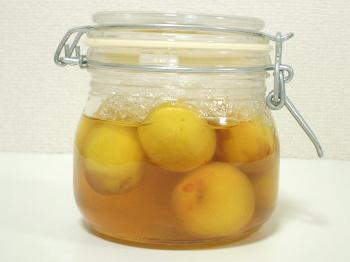 梅の蜂蜜漬け 1日後(24時間)