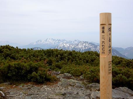 蝶ヶ岳 035