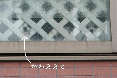 2_24_0850.jpg