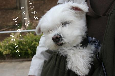 3_16_4465.jpg