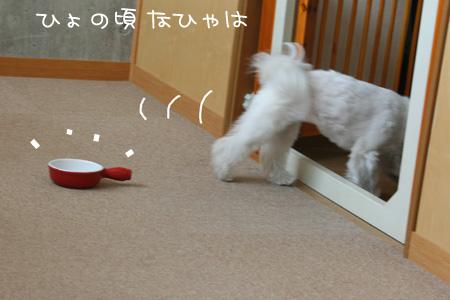 3_18_4686.jpg