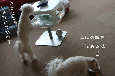 3_20_4984.jpg