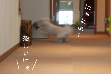 3_20_5005.jpg