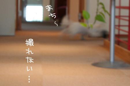 3_20_5008.jpg