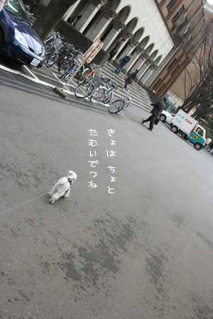 3_21_5064.jpg