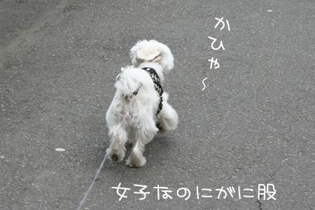 3_21_5100_1.jpg