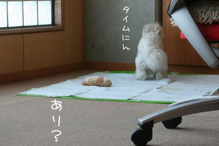 3_22_5235.jpg