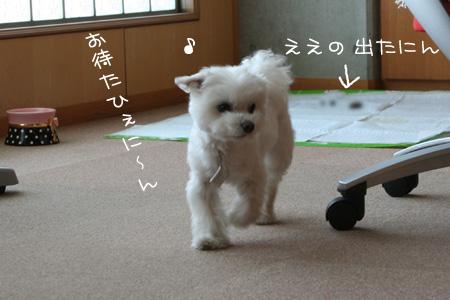 3_22_5238.jpg