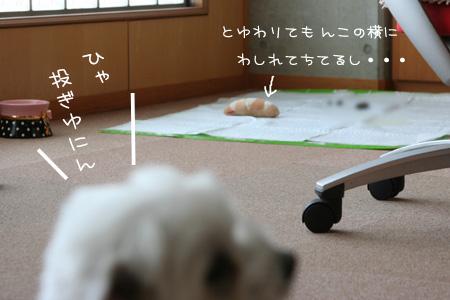 3_22_5240_1.jpg