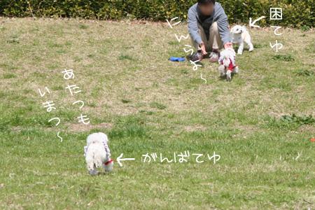 3_23_5475.jpg
